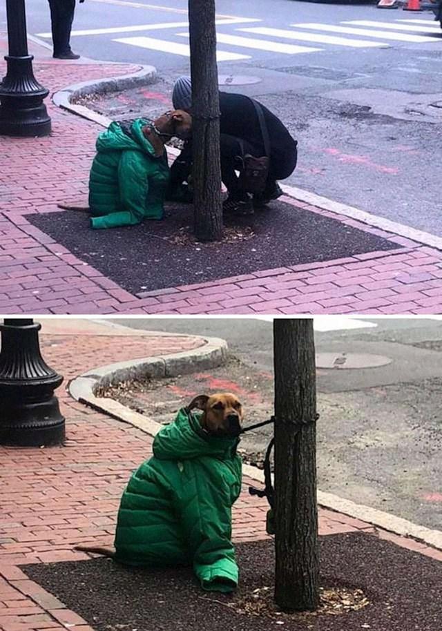 8. Susretljiva žena ogrnula je psića koji čeka svojeg vlasnika na hladnoći svojom jaknom.