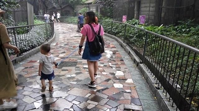 23. Često ćete vidjeti kako roditelji vode djecu na povodcu.