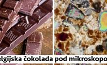 Evo kako 14 stvari koje svakodnevno viđamo izgledaju pod mikroskopom