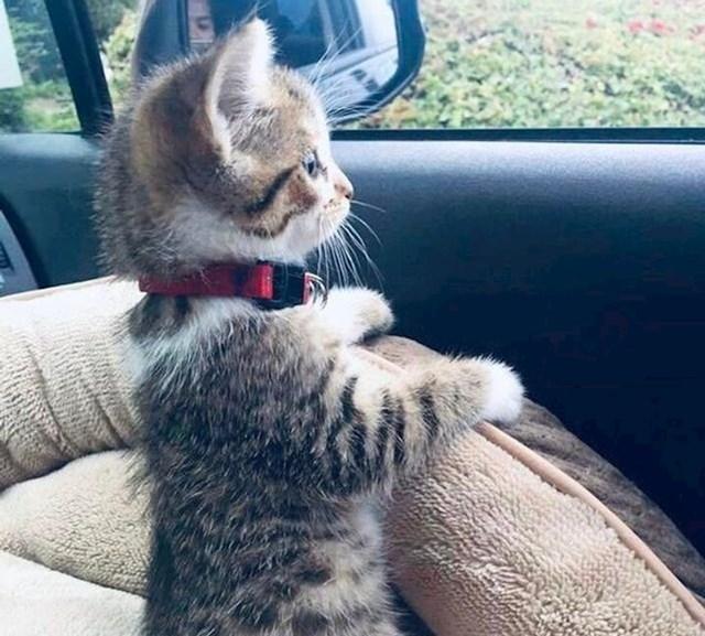17. Njezina prva vožnja.
