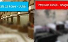 Ostat ćete bez teksta kad vidite usporedbu izgleda štale za konje u Dubaiju i bolnice u Beogradu