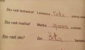 Školarac je brutalno iskreno odgovorio na pitanje za domaću zadaću i razljutio učiteljicu