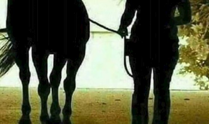 Fotka koja je posvađala internet: Djevojka i konj dolaze ili odlaze?