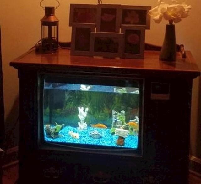 11. Napravio je akvarij od starog TV-a
