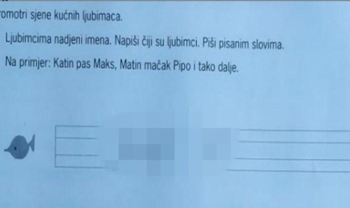 Ekipa s Fejsa umire od smijeha na odgovore koje je ovaj klinac napisao u školskom zadatku