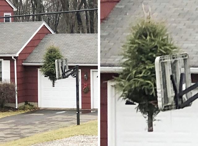 """9. """"Moj susjed samo je došao pred kuću mojeg drugog susjeda, napravio ovo i otišao."""""""