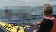 Čovjeka u kajaku zapanjio je bliski susret s zastrašujućim stanovnikom oceana