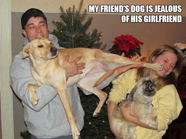 3. Pas mojeg prijatelja ljubomoran je na njegovu curu.