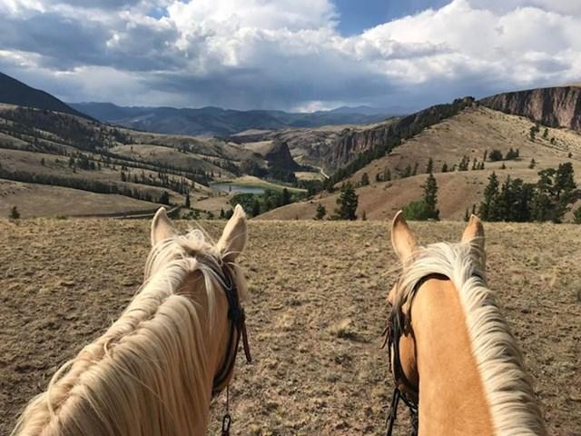 """25. """"Vodim ture s konjima i obožavam svoj posao!"""""""