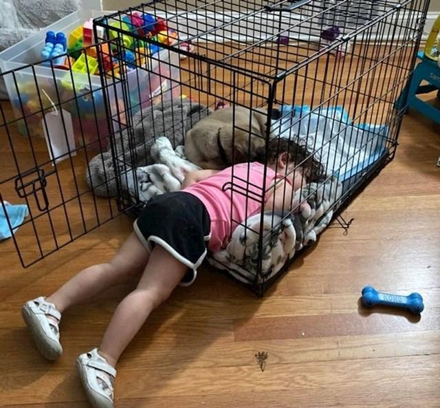 """5. """"Naša kćerka nije htjela da psić spava sam..."""""""