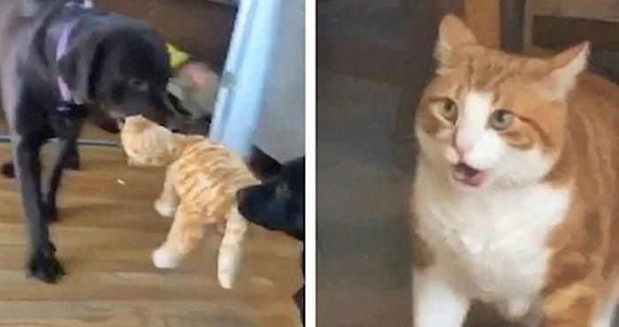 VIDEO Nije mu bilo svejedno kad je vidio što rade s igračkom koja izgleda kao on