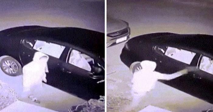 Nadzorna kamera snimila je najsmotanijeg lopova koji je valjda shvatio poruku