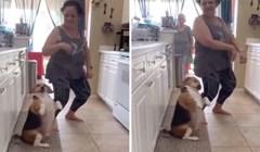 Upoznajte psa koji obožava plesati, njegovi plesni pokreti potpuno će vas oduševiti