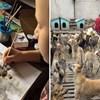 Devetogodišnjak koji razmjenjuje slike za hranu za sklonište životinja, obnovit će vašu vjeru u čovječanstvo