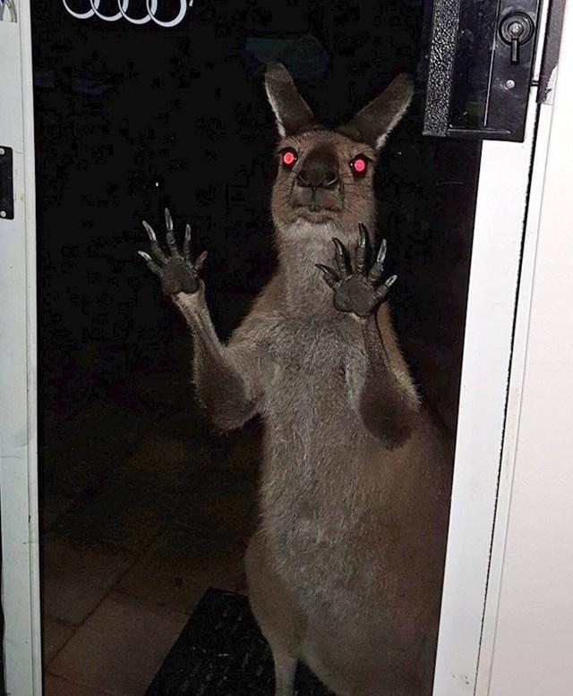 Samo još jedna normalna noć u Australiji.