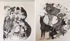 VIDEO Ova umjetnica ilustrirala je prekrasnu knjigu abecede pasmina