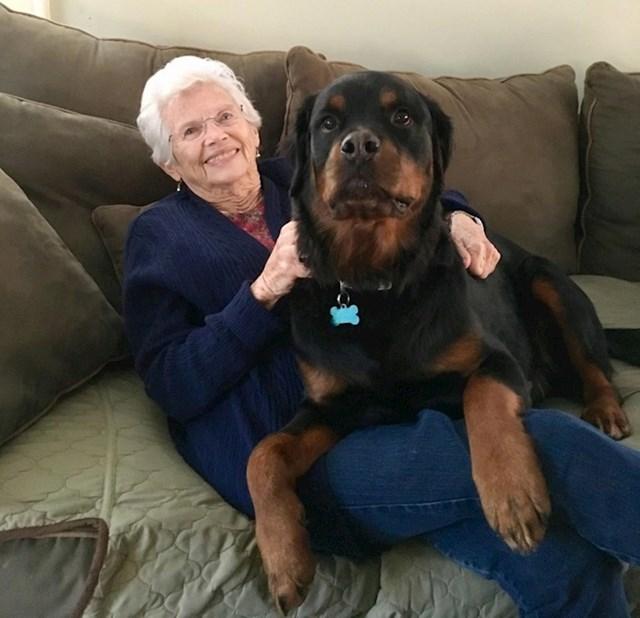 """""""Baka je uvijek govorila da želi psa koji joj može sjesti u krilo."""""""