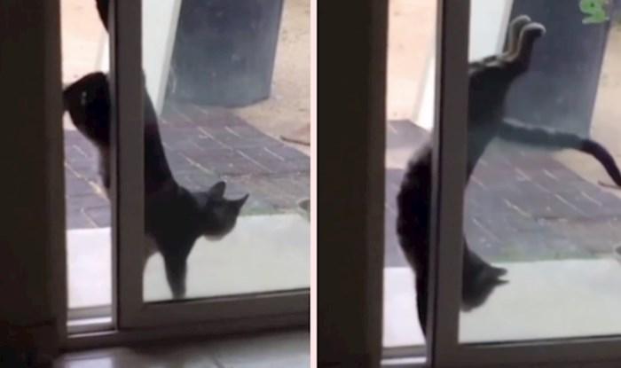 Ona ima svoj presmiješni način kako se vratiti u dom nakon svake šetnje