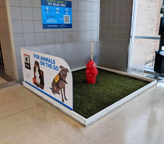 Zračna luka Philadelphia ima lažni vatrogasni hidrant za službene pse i kućne ljubimce na koje se može urinirati.