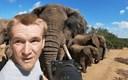 VIDEO Pogledajte nevjerojatan susret fotografa s krdom slonova