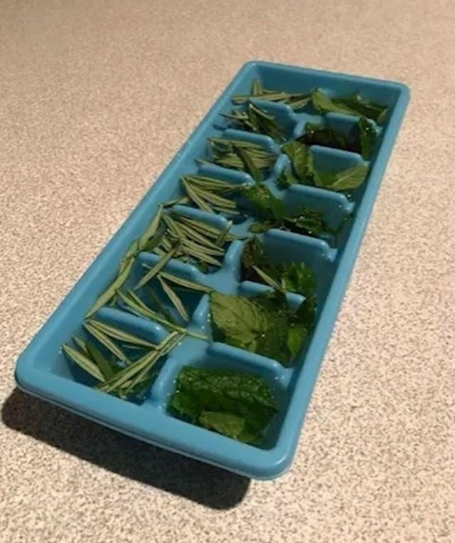 Koristite kalupe za led kako biste spriječili da svježe začinsko bilje uvene. Dodajte samo malo vode u svaku kockicu.