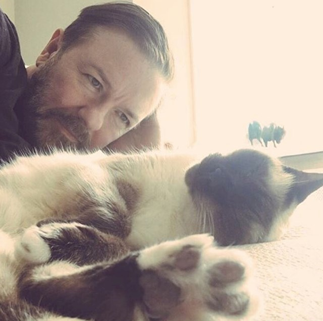 8. Ovo je zvijezda Ollie, mačka Rickyja Gervaisa.