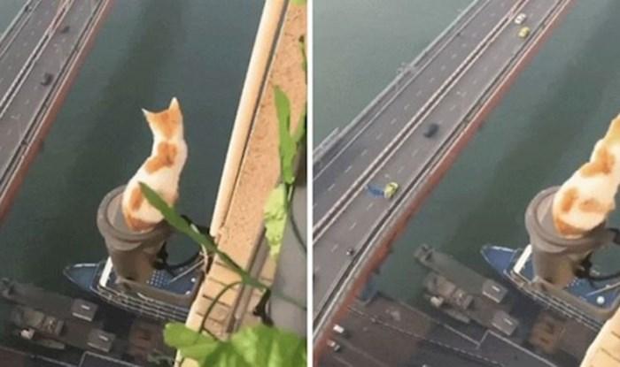 Kaže se da mačke imaju devet života. Nije ni čudno kada rade ovakve stvari