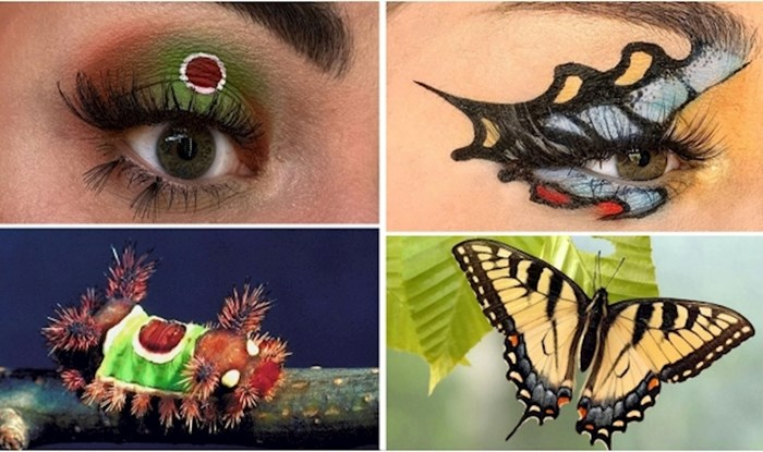 Ova vizažistica inspiraciju je pronašla u kukcima! Pogledajte 18 šarenih primjera