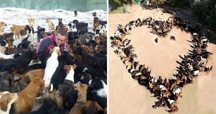 """Ljudi vole """"Sašino sklonište"""", ovaj čovjek spasio je više od 750 pasa s ulica u Srbiji"""