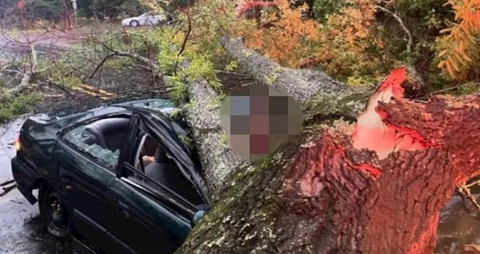 Munja je srušila stablo na automobil, pogledajte koliko sreće u nesreći je imao ovaj čovjek