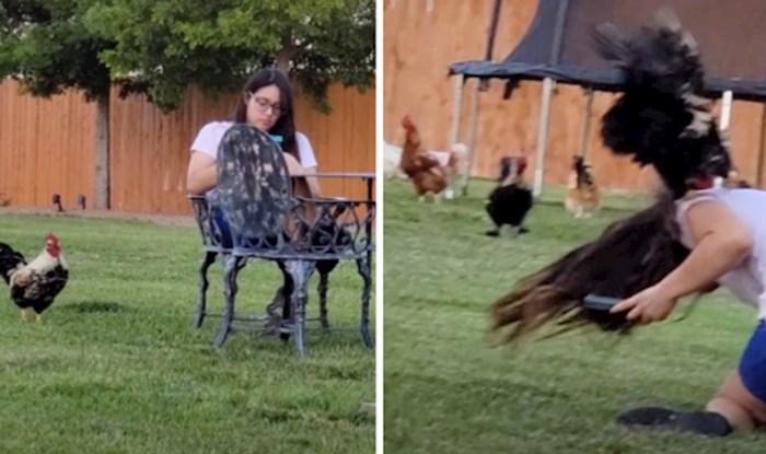 Djevojka se opuštala u vrtu, ali nije ni slutila što bi se sljedeće moglo dogoditi