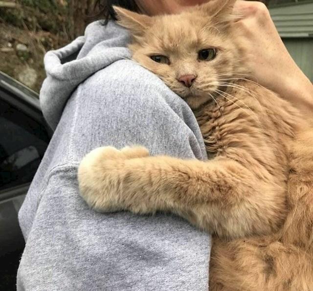 #9 Mačka koja je zagrlila svoju vlasnicu nakon što se izgubila na 5 sati.