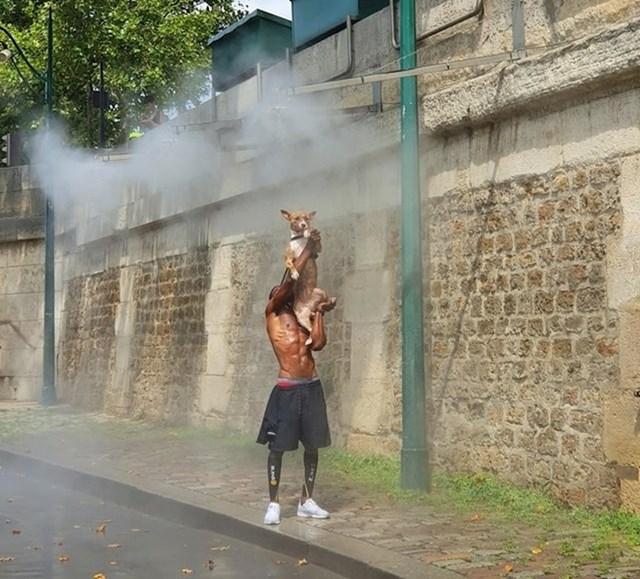 """5. """"Ugledao sam tipa u Parizu kako pomaže svom psu da se ohladi tijekom toplinskog vala."""""""