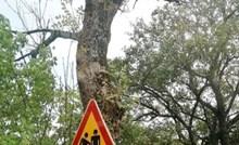 Tisuće ljudi smije se ovom potpuno nejasnom znaku; ovo morate vidjeti!