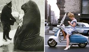 20 fotografija koje nam pokazuju kako su ljudi živjeli desetljećima prije