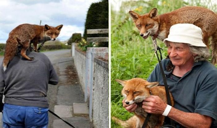 Ovaj Irac spasio je dvije lisice koje ga sad ne ispuštaju iz vida
