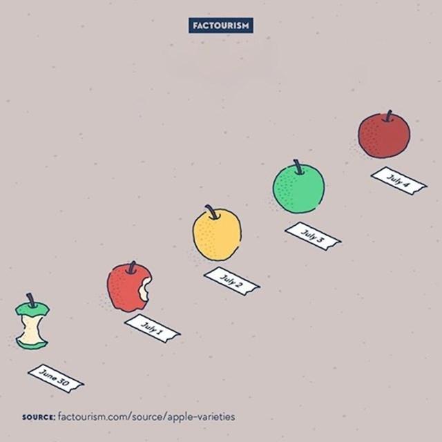 #4 Postoji toliko različitih vrsta jabuka da bi vam trebalo 20 godina da sve probate.