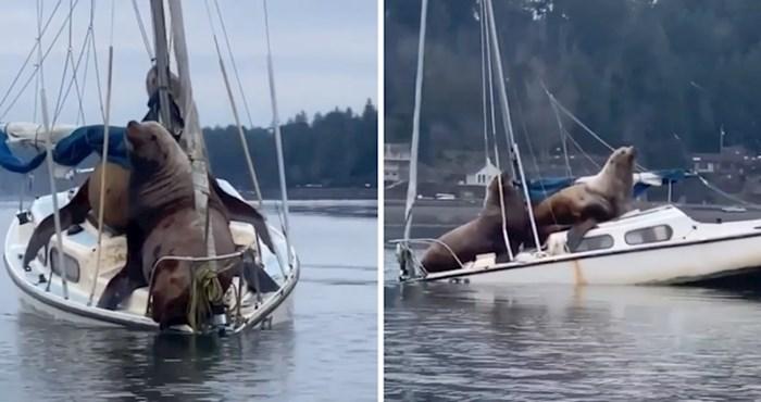 Pogledajte što je ovaj ribar snimio dok se vraćao u luku