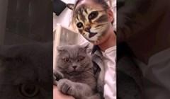 VIDEO Zbunjene mačke i urnebesne reakcije na filtere za lice njihovih vlasnika
