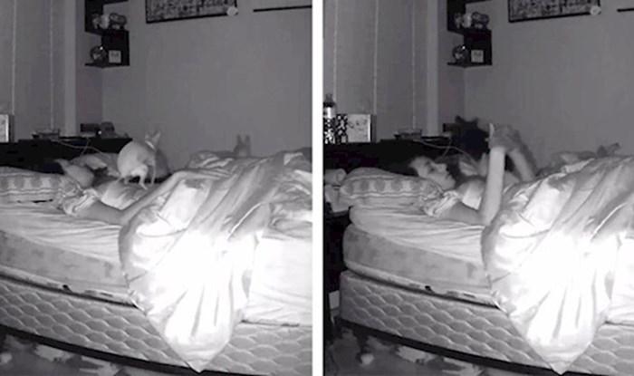 VIDEO Dok je spavala došao je njen pas i učinio nešto što nikad neće zaboraviti