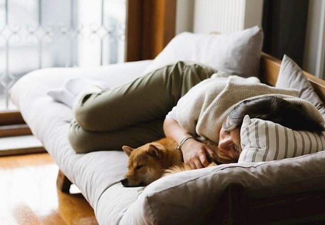 Spavanje sa psom također je dobro za njih!