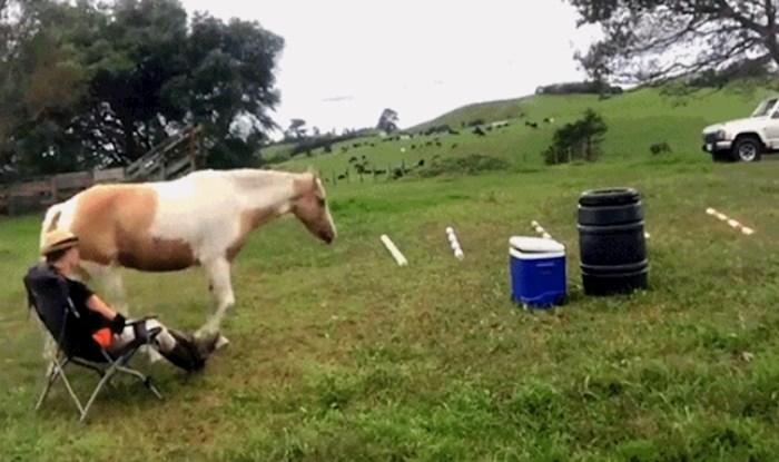 Vlasnik je pametnog konja naučio da napravi nešto presmiješno, ali i korisno
