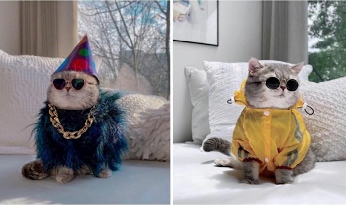 Bensona su prethodni vlasnici napustili, a sad je Instagram zvijezda zahvaljujući slatkoj odjeći
