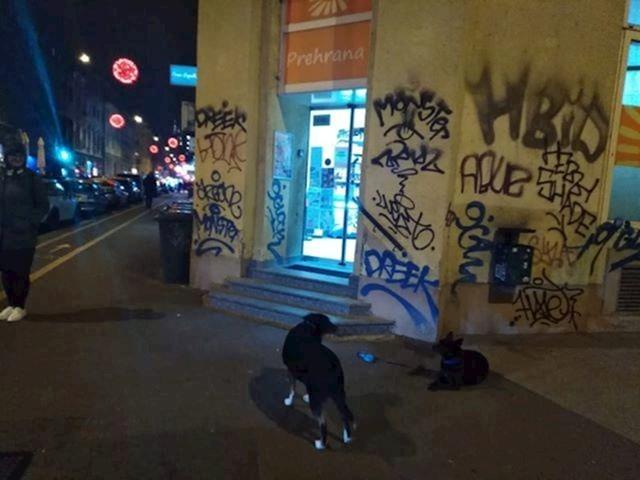 Prestanite optuživati Lil Kim i Micro Kim da su našarale ove grafite. Samo zato što imaju repove ne znači da su reperice.