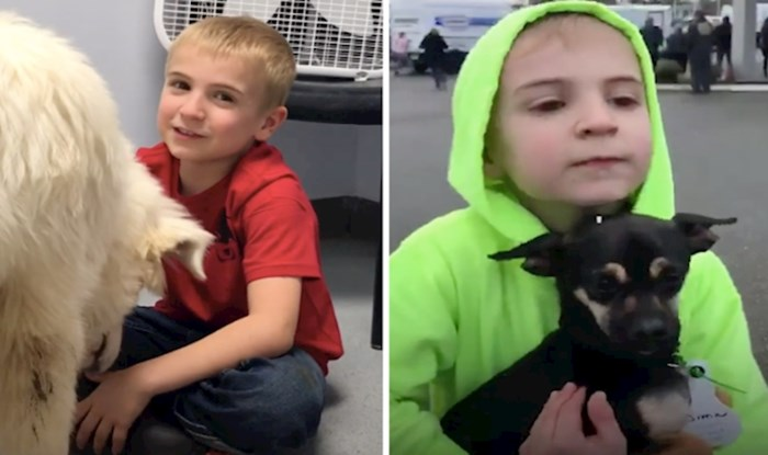 VIDEO Ovaj dječak ima cilj udomiti što više pasa i to mu polazi za rukom
