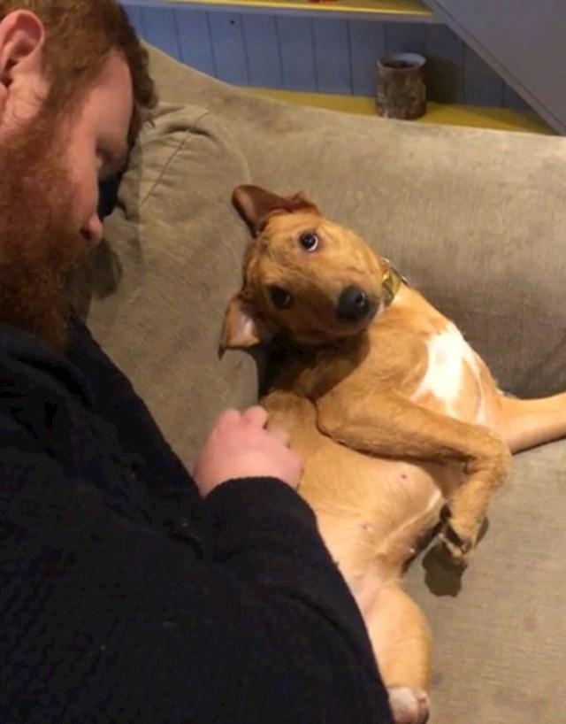 #7 Kako naša udomljeno štene gleda na mog supruga .