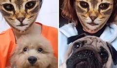 VIDEO Pogledajte reakcije pasa kada vide mačji filter na licima svojih vlasnika