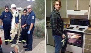 14 fotki ljudi koji su besramno fotografirali tuđe nezgode