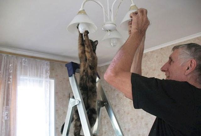 #4 Koliko mačaka je potrebno da biste promijenili žarulju?