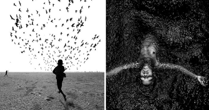 Crno-bijela fotografija oduvijek inspirira, pogledajte najbolje u 2019. godini